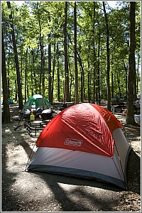 Camping at Colleton State Park