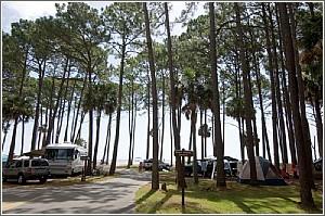 Camping at Hunting Island State Park
