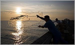 Surf fishing south carolina trout fishing in south for South carolina saltwater fishing regulations