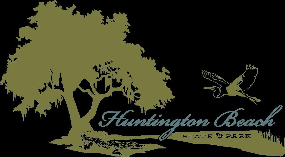 Huntington Beach Camping | South Carolina Parks Official Site